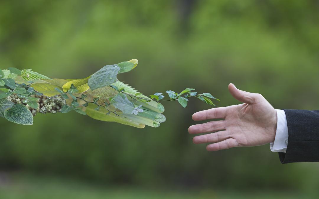 Sustainability Analytics – How to Define Sustainability Metrics